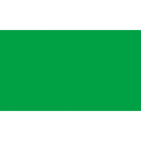 ЛДСП EGGER Зелений травень U600 ST9 NEW
