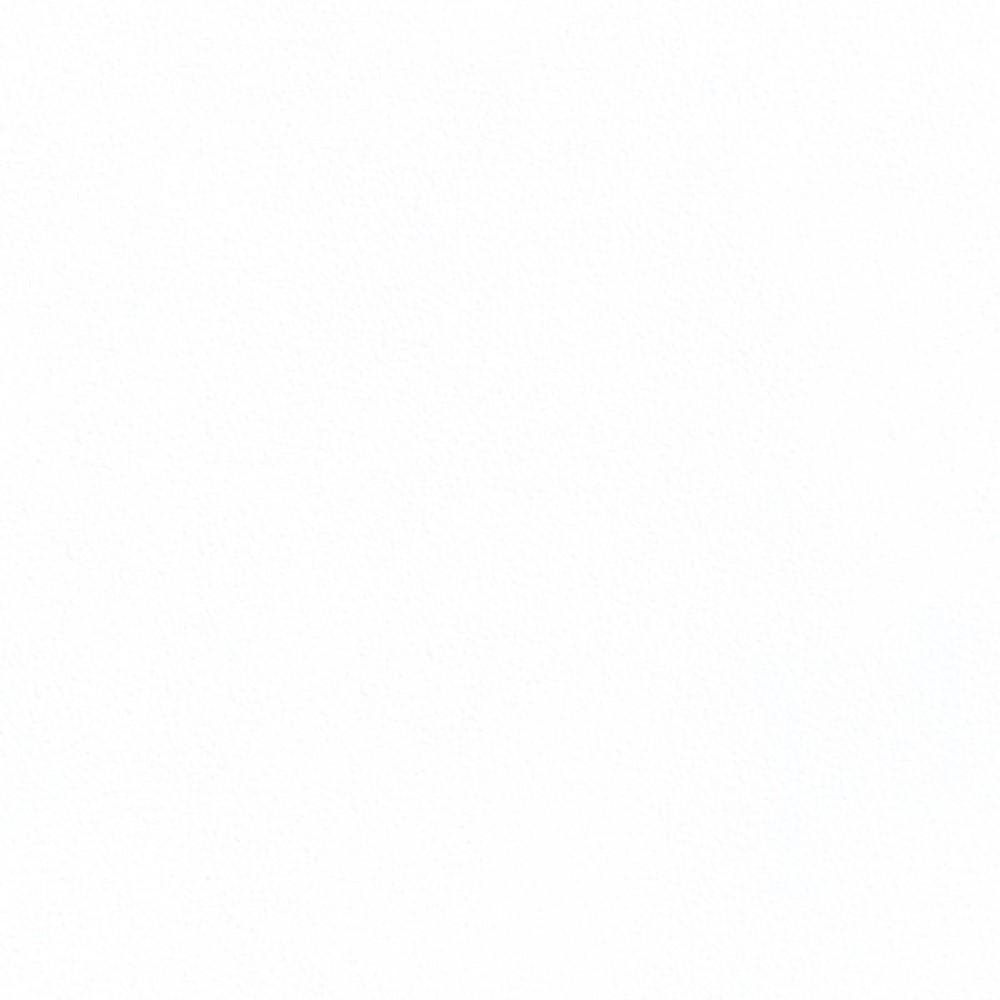 МДФ панель AGT 231 Білий РЕ Мат 2800x1220x8 мм