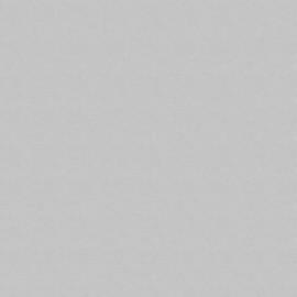 ЛДСП Swiss Krono Сірий U 112 PE