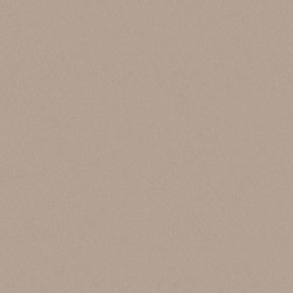 ЛДСП Swiss Krono Титан D 2899 SM